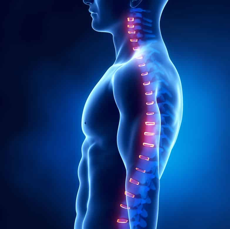 Chiropractic X-ray Side View